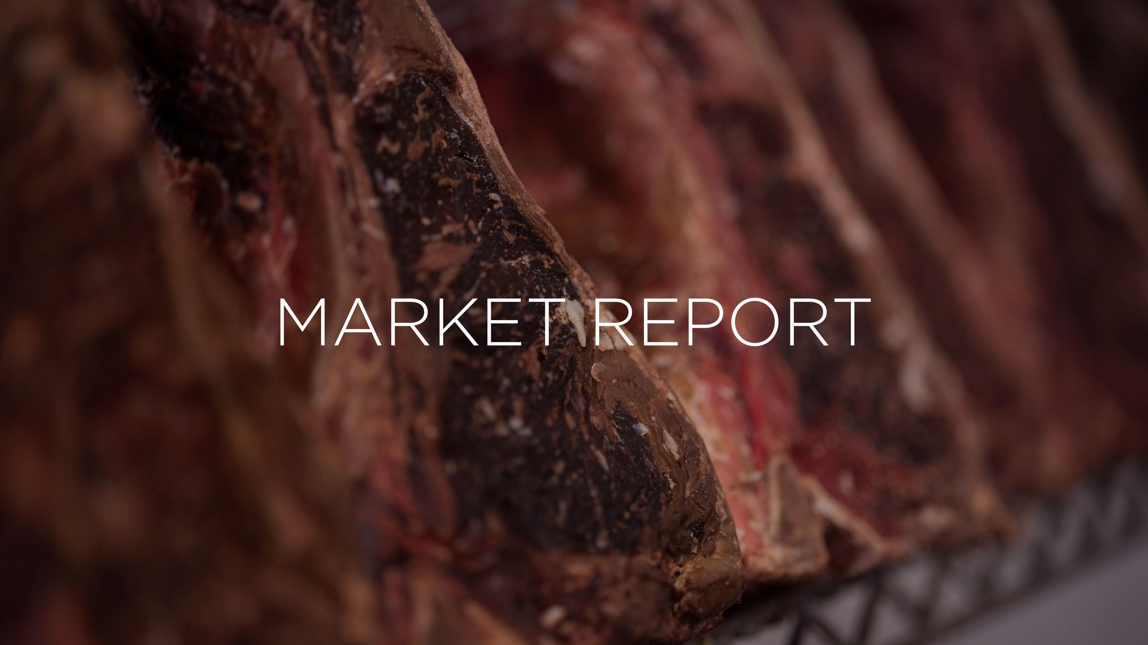 Market Report for August 2018